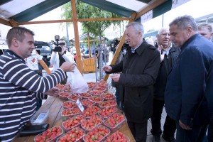 Jagodice purgerice zavladale Zagrebom