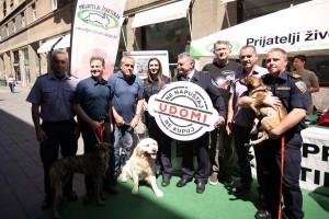Prijatelji životinja pozvali građane da ne napuštaju kućne ljubimce tijekom godišnjeg odmora