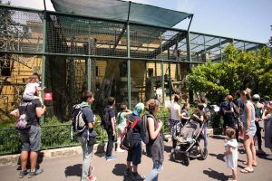 ZOO ZAGREB: Najmlađi uče o zdravlju